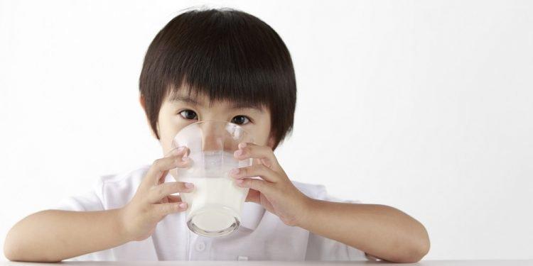 Hướng dẫn trẻ 2 tuổi nên uống sữa gì là tốt nhất